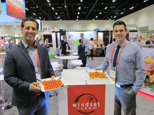 Matt Modena with Windset Farms Cameo Elite Tomatoes while Ryan Cherry holds the Tango Tomatoes