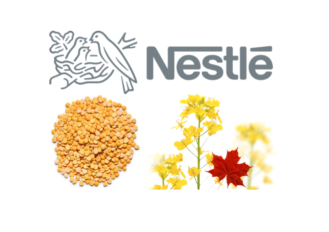 Nestle partners with Canadian firm for plant-based protein