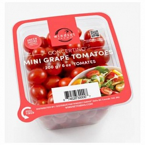 Concertino grape tomatoes