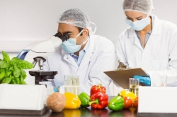 Produce group launches food safety fund to support research