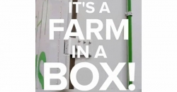 WATCH: Farm in a box